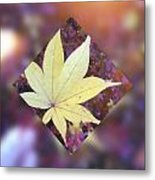 One Yellow Maple Leaf Metal Print