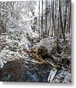 Onomea Stream In Infrared Metal Print