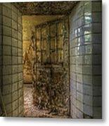 Open Flake Door Metal Print
