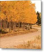 Open Road 5 Metal Print