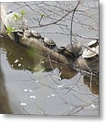 Opposite Direction Metal Print