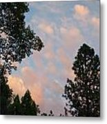 Opposite The Sunset Metal Print