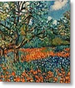 Orange And Blue Flower Field Metal Print