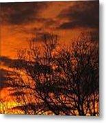 Orange And Yellow Sunset Metal Print