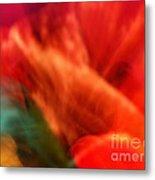 Orange Blossom Opening Metal Print