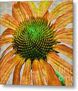 Orange Crackle Metal Print