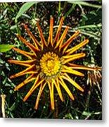 Orange Curl Metal Print