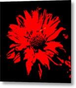 Orange Flower Burst  Metal Print