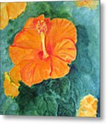 Orange Hibiscus Metal Print