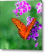 Orange Monarch Butterfly Metal Print