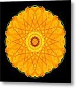 Orange Nasturtium Flower Mandala Metal Print