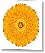 Orange Nasturtium I Flower Mandala White Metal Print