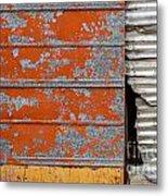 Orange Paint Metal Print