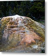 Orange Spring Mound #2 Metal Print