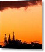 Orange Sunset And Silhouettes Of Norfolk Pines Metal Print