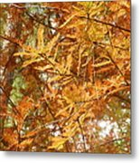 Orange Trees Metal Print