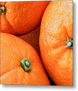 Orange Trio Metal Print