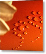 Orange Water Flowers Metal Print by Kip Krause