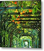 Oranges And Lemons On A Green Trellis Metal Print