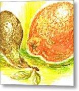 Oranges And Pears Metal Print