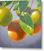 Oranges Metal Print by Carey Chen