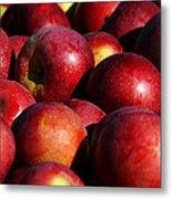 Orchard Fresh Metal Print