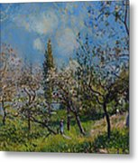 Orchard In Spring Metal Print
