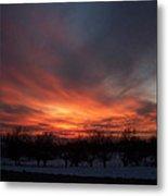 Orchard Sunset Metal Print