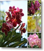 Orchid Collage Metal Print