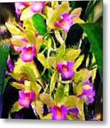Orchid Flower Bunch Metal Print