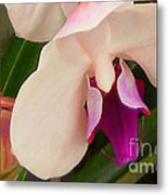 Orchid One Metal Print
