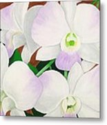 Orchid Splendor Painting Metal Print
