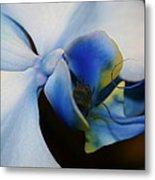 Orchid Taste Metal Print