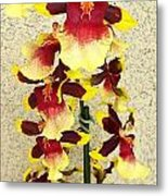 Orchids 18 Metal Print