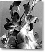 Orchids 2 Bw Metal Print