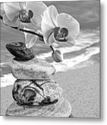 Orchids And Pebbles On The Sand In Black And White Metal Print