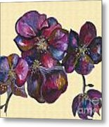 Orchids Cream Metal Print