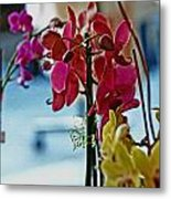 Orchids In A Window Metal Print