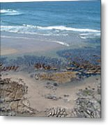Oregon Coast Beauty Metal Print