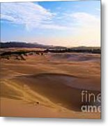 Oregon Dunes Landscape Metal Print