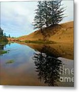 Oregon Dunes Pond Metal Print