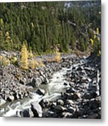 Oregon Wilderness II Metal Print