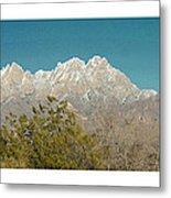 Organ Mountain Wilderness Metal Print
