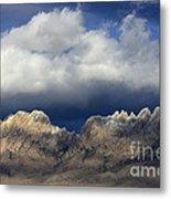 Organ Mountains New Mexico Metal Print