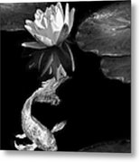 Oriental Koi Fish And Water Lily Flower Black And White Metal Print