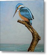 Original Animal Oil Painting Bird  Art Kingfisher On Canvas#16-2-6-15 Metal Print