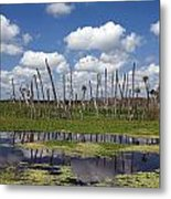 Orlando Wetlands Cloudscape Metal Print by Mike Reid