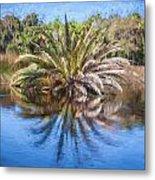 Ormond Scenic Loop Florida Palm Tree Painted  Metal Print