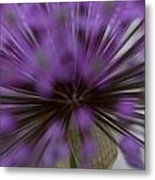Ornamental Onion Metal Print