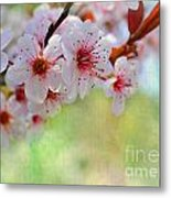 Ornamental Plum II Metal Print